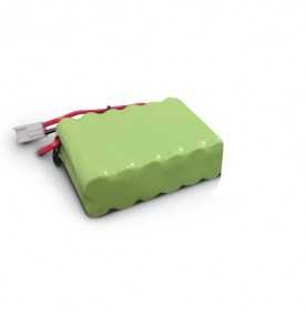 Batterie de secours NT50